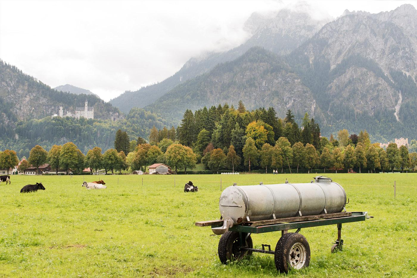 schloss-hohenschwangau-allgaeu-royal-castleschwanstein-schloss-schwanstein-schwangau-travelbericht