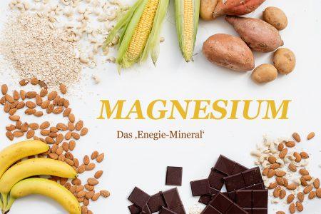 magnesium-mineralstoff-mikronährstoffe-präventiv-medizin-ortomolekulare-medizin-blog